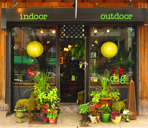 dig Garden Design Landscaping and Gardening Shop in Brooklyn NY